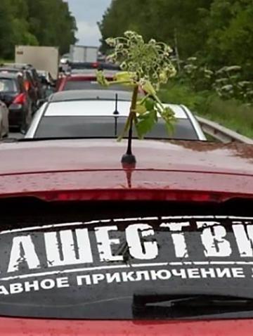 Наклейки на машину